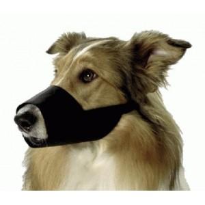 fixační náhubek pes