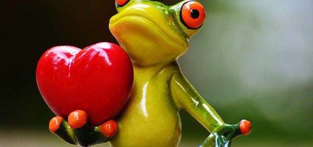 milovaná žába