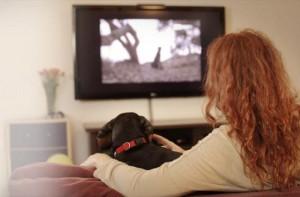 pes televize